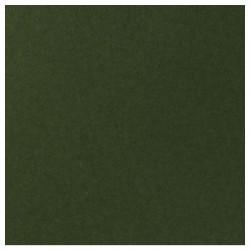 Papier uni - couleur : Pine