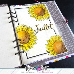 Exemple sur Bullet Journal
